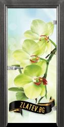 Стъклена интериорна врата Print G 13 3 G