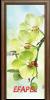 Стъклена интериорна врата Print G 13 3 H