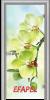 Стъклена интериорна врата Print G 13 3 L