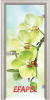 Стъклена интериорна врата Print G 13 3 V