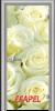 Стъклена интериорна врата Print G 13 6 L