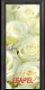 Стъклена интериорна врата Print G 13 6 O