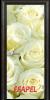 Стъклена интериорна врата Print G 13 6 R