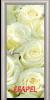 Стъклена интериорна врата Print G 13 6 V